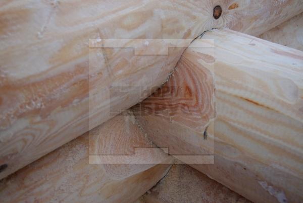 Этап строительства дома из бревна
